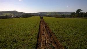 starter-farm-gallery01